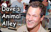 Dave's Animal Alley